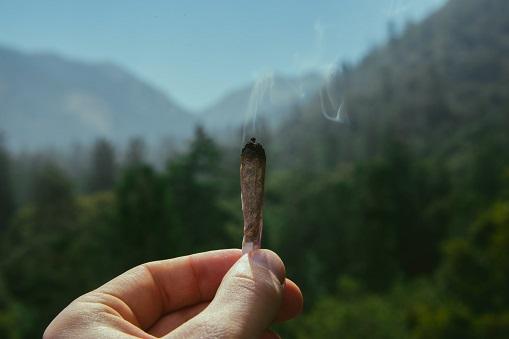 Tratamiento para dejar los porros en Valencia. Adicción al cannabis y la marihuana.