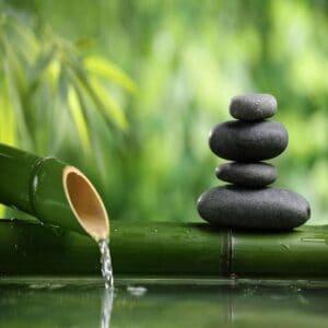 mindfulness ivatad valencia adicciones